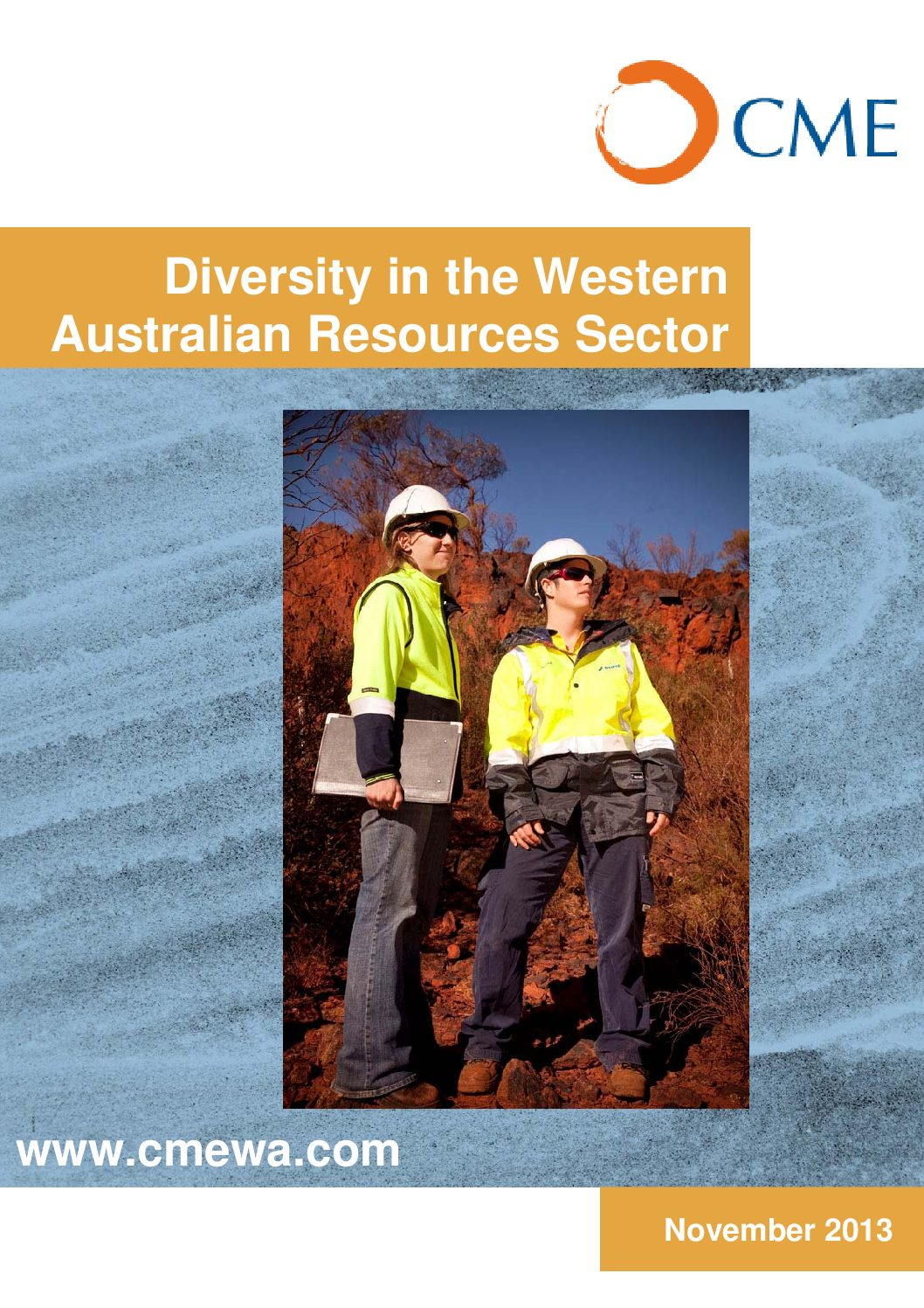 Diversity in the Western Australian Resources Sector Survey Report 2013