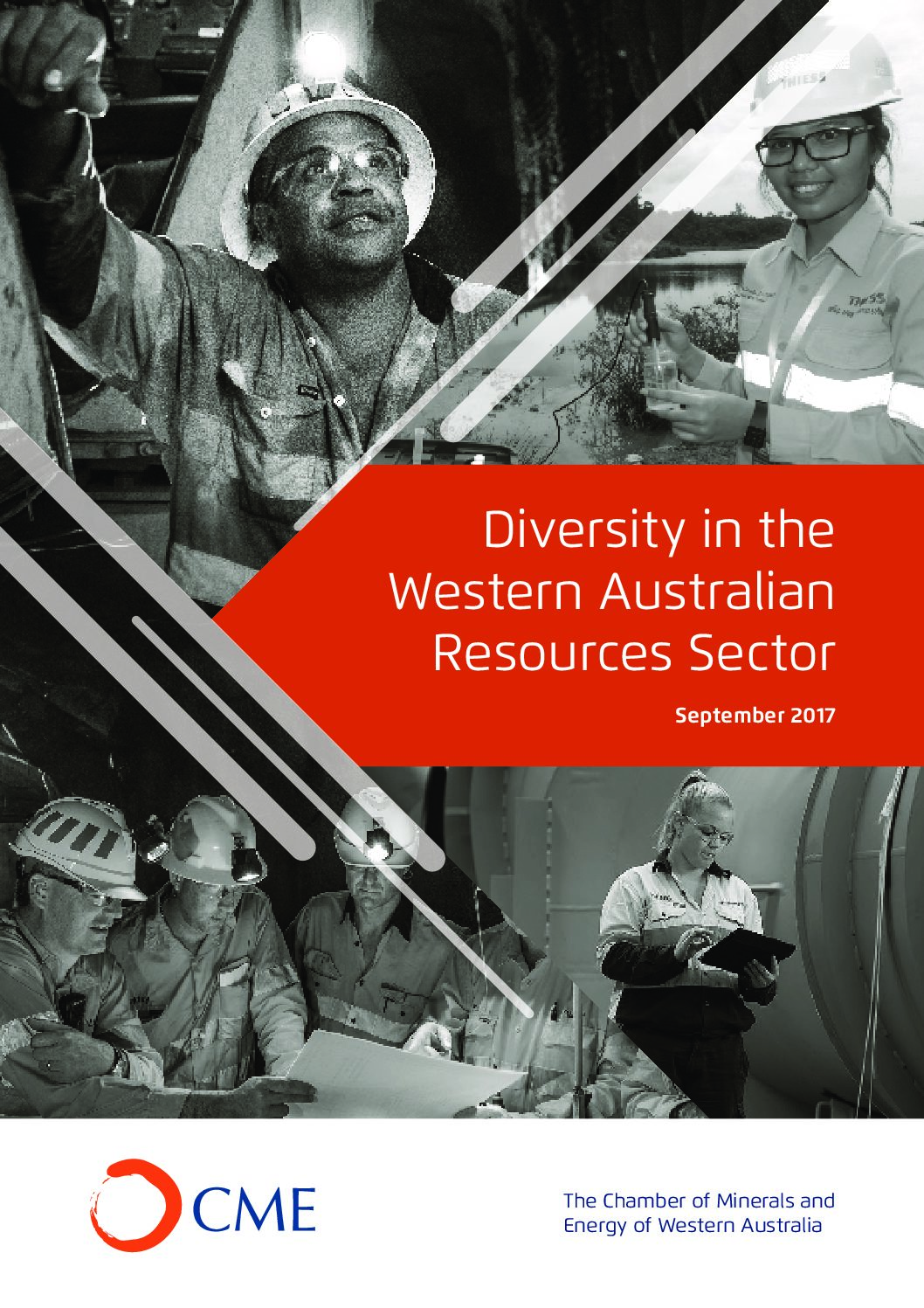 Diversity in the Western Australian Resources Sector Survey Report 2017